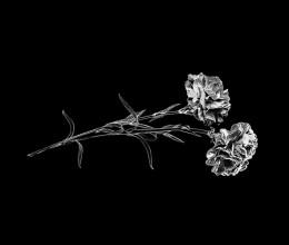 Гравировка цветов