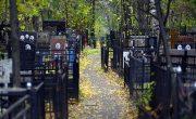 Установка памятников в Протвино. В каталоге нашей компании собрано более трехсот лучших образцов памятных надгробий из гранита и гранитополимера.
